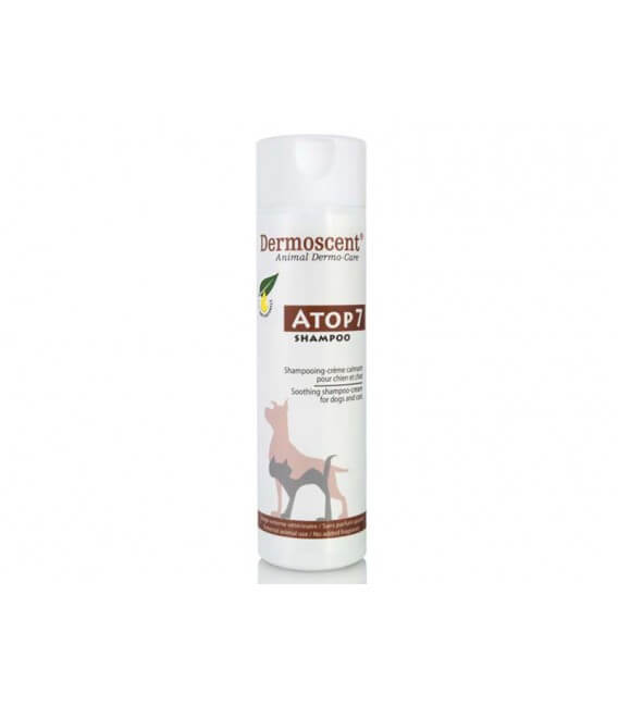 Recharge Shampooing ATOP7 Chien et Chat - Dermoscent