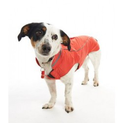 Manteau RAINCOAT ORANGE T.XL Chien