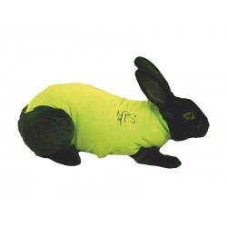 Gilet de protection Lapin MEDICAL PET SHIRT T XS 1.6 - 2 kg