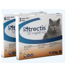 Solution STRECTIS 121/60 MG Chat 6 pip.