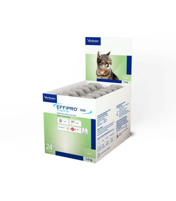 Solution EFFIPRO DUO S/O Chat 24 pip.