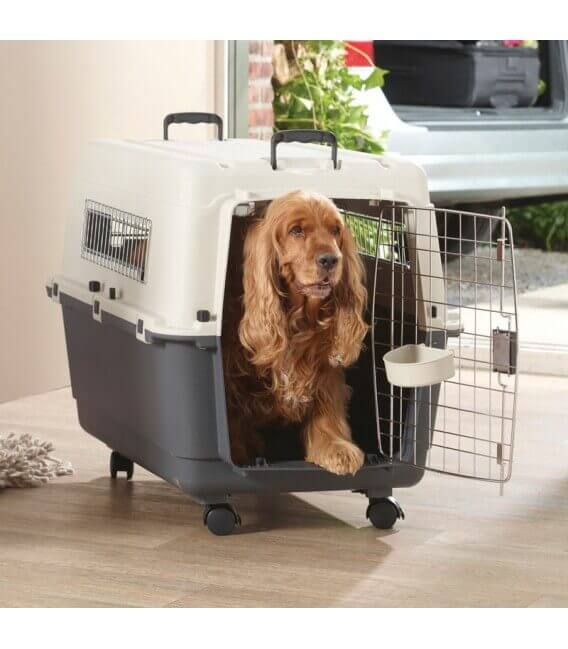 Cage ANDES T5 Chien