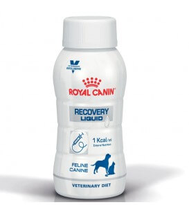 Aliment RECOVERY LIQUID Chien Chat - Veterinary Diet