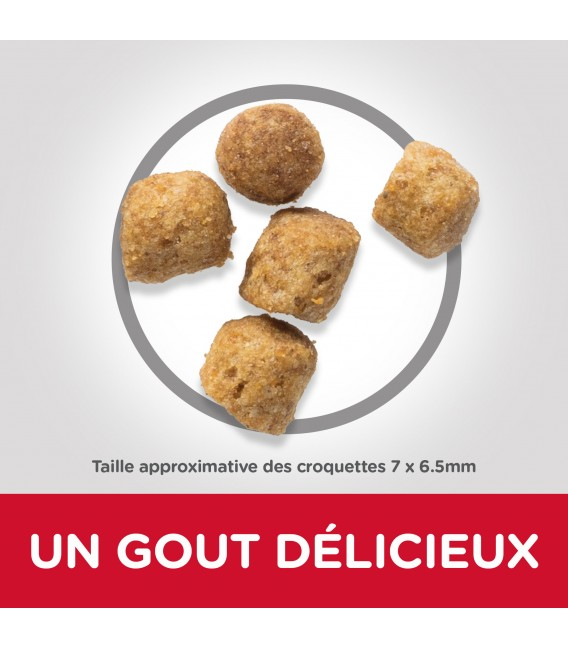 Croquettes ADULT LIGHT POULET Chat Sac 10 kg - Science Plan