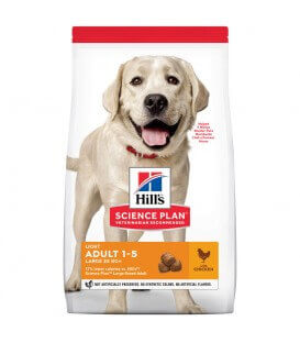 Croquettes ADULT LIGHT LARGE POULET Chien Sac 18 kg - Science Plan
