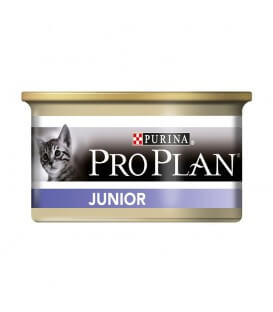Pâtée JUNIOR POULET Chat 24x85g - Proplan