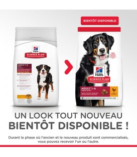 Croquettes ADULT LARGE POULET Chien Sac 18 kg - Science Plan