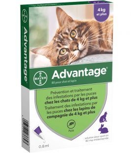 Solution ADVANTAGE 80 Chat et Lapin 6 pip.