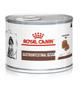 Pâtée GASTRO INTESTINAL JUNIOR Chien - Veterinary Diet