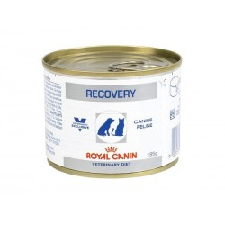 Pâtée RECOVERY 12 x 195 g Chien et Chat - ROYAL CANIN Veterinary Diet