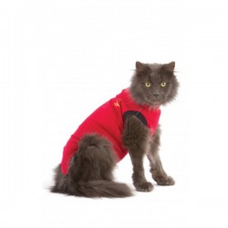 MEDICAL PET SHIRT CHAT T XXS